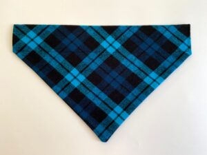 electric blue plaid
